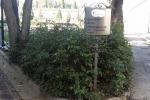 certosa-dispersione-ceneri-cartello