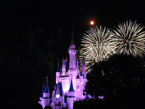 Dispersione ceneri a Disney World