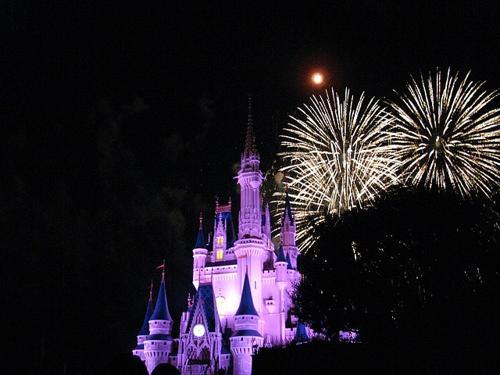 Dispersione ceneri a Disney World