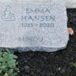 Nel cimitero di Amburgo per umani e animali